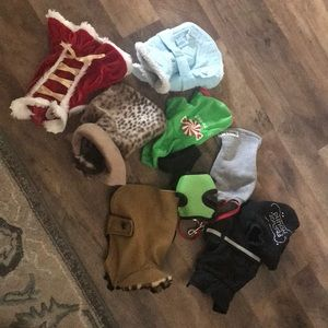11 piece small dogs accessories